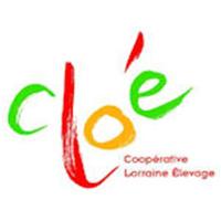 Coopérative Agricole Lorraine : filiales et groupes - cloé