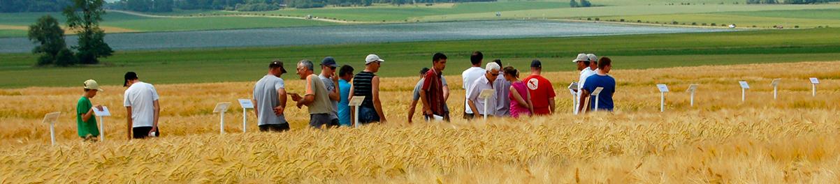 Coopérateur agricole : un état d'esprit