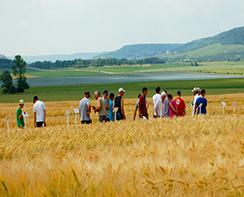 Agriculteurs lorrains aujourd'hui