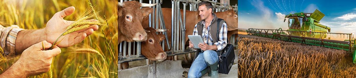 La démarche qualité de la Coopérative Agricole Lorraine