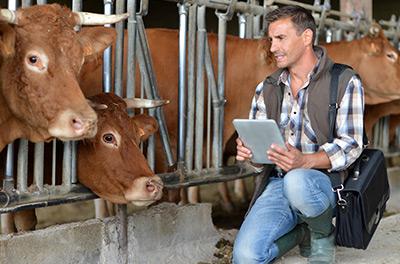 L'expertise de la Coopérative Agricole Lorraine