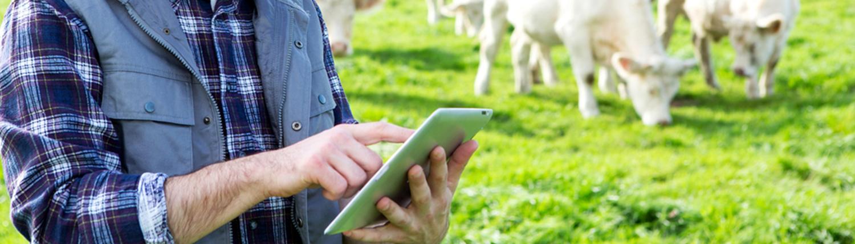 La Coopérative Agricole Lorraine - réseaux sociaux